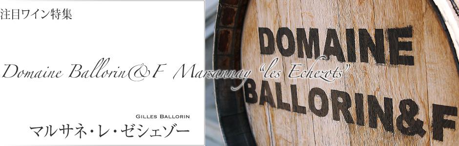 コート・ドールの希少なビオディナミスト、ジル・バロラン。ピエール・マッソンに師事したジルが造り出すのは、ピュアな果実味とナチュラルで心地良いエキス分が身体に滲みわたる味わいワイン。黒胡椒とカシスの香り、洗練されたミネラル感と旨み、冷涼で引締った味わいが見事な『マルサネ・レ・ゼシェゾー』
