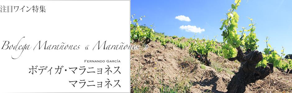 ボディガの名前にもなっているワイン『マラニョネス』は、「南のピノノワール」と言われるガルナッチャを体現するワインです。ピュアで淡い色調、そして、どこかピノノワールを思わせる可憐さと繊細さがあります。華やかさのなかにスゥーと伸びる酸とミネラル感が美しく調和する味わいです。